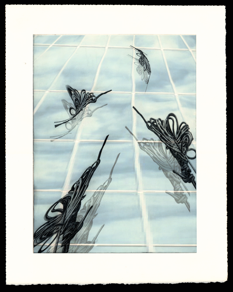 Funis fenestrae - Window ropes