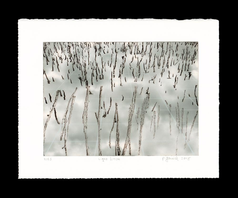 Ligna lutum - Mud Sticks
